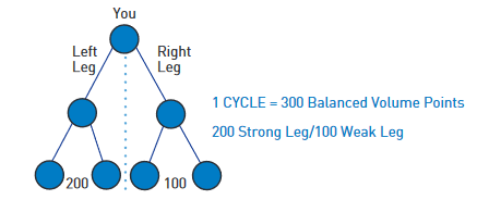 BeachBody Commission Breakdown Cycle Binary Chart