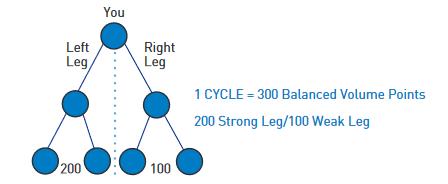 BeachBody Commission Breakdown Cycle Binary Chart
