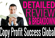 Copy Profit Success (CPS) Global Review and Compensation Plan