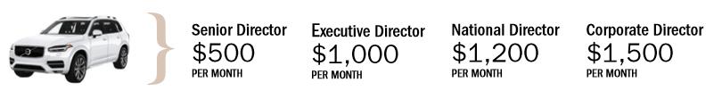 Melaleuca Monthly Car Bonus Chart