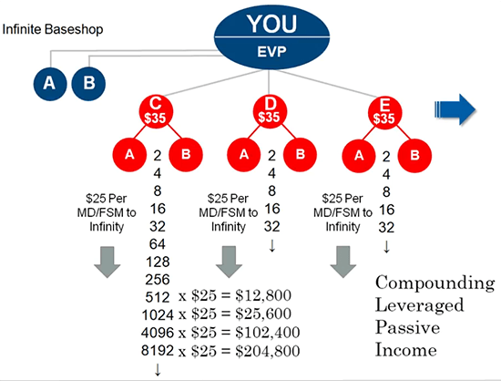 MyEcon Review of the Compensation Plan