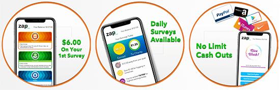 How Does Zap Surveys Work