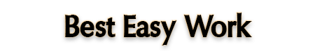 Best Easy Work llc Review