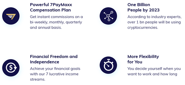 What My Crypto Consult Offers