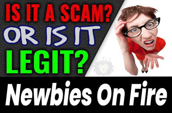 Newbies On Fire Review Scam Compensation Plan
