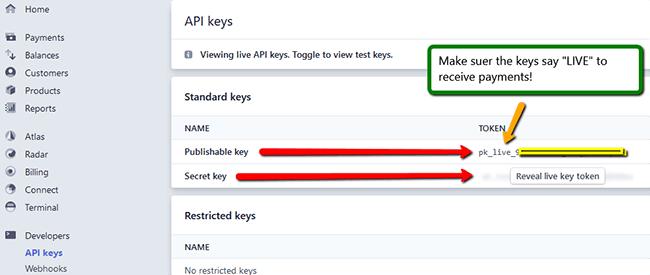 Stripe LIVE API Keys in Developer Page